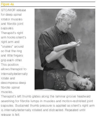 Massage therapists need to understand this reflexogenic influence that joints have on muscles that tug on cervical structures, and lead to long-term head, neck and scapular pain.