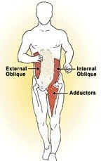 Figure 6: ASSS: Oblique abdominal contraction creates a contralateral fascial pull through the lower torso to the adductors.