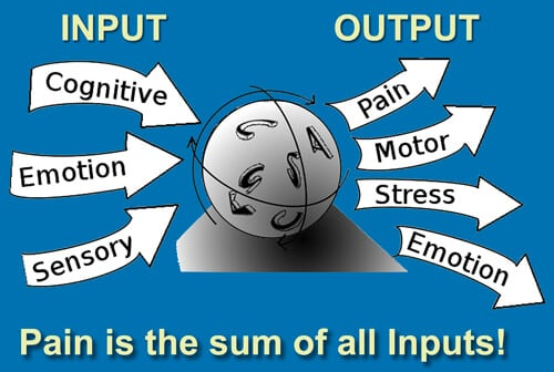 Pain is the sum of all inputs...