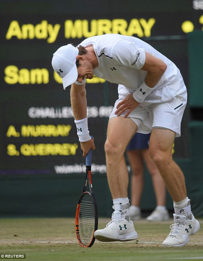 Fig. 1 Andy Murray