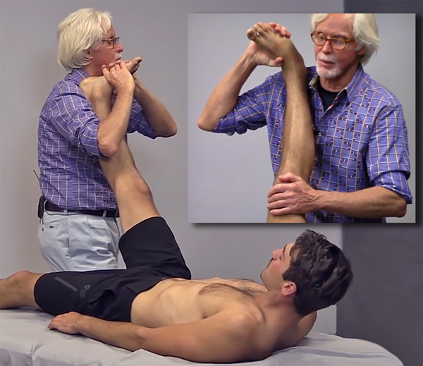 Image 4: The therapist performs a straight leg (sciatic nerve) test with the clients' foot dorsiflexed and invertd. To floss the peroneal nerve, the therapist slowly raises the client's leg to the first sign of discomfort, and as they bring the extended leg down, the client flexes the neck to pull the sciatic nerve headward. The therapist and the client repeat the back and forth flossing movement for 2 minutes each session, and the client practices the technique to continue at home after the session.