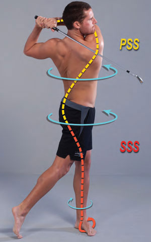 Fig. 3 - Smooth coordinated movement