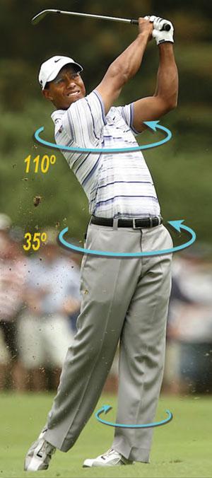 Fig. 1 Tiger Woods form