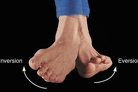 Inversion and eversion photo of foot
